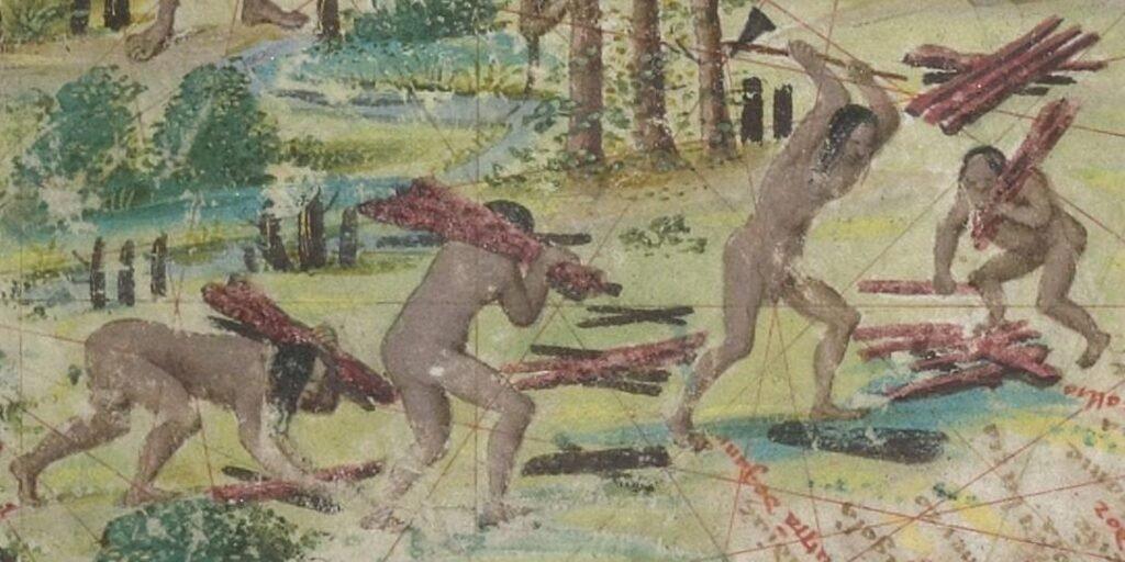 Terra Brasilis, Atlas Miller, 1519, detalhe
